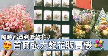 隨時哄人開心都得!首爾弘大人氣「乾花販賣機」~就連木棉花束都有!