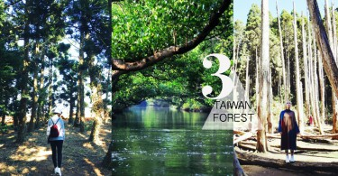 山系情侶進攻台灣!精選全台3個森林秘境~簡直係拍攝既絕佳地點!