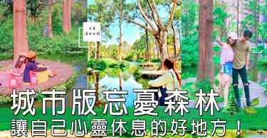 城市裡面嘅忘憂森林!大東濕地公園,在繁忙城市中讓人呼吸新鮮空氣嘅好地方~