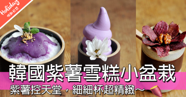 紫薯控天空!!韓國可愛紫薯雪糕小盆栽,好似藝術品靚到唔捨得食~~