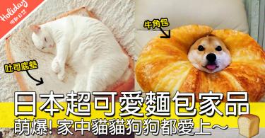 當紅「貓咪吐司底墊」真身!日本NITORI 超可愛「創意家具」,絕對會讓家裡萌值破錶!