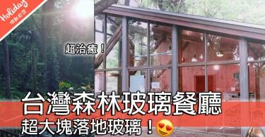 超治癒超夢幻!台灣南投「蟬說:鳳凰亭序」森林玻璃餐廳~彷彿身處童話中!