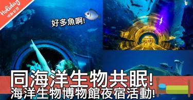 新奇體驗!夜宿台灣屏東國立海洋生物博物館~同一大群海洋生物共眠真係好正啊!