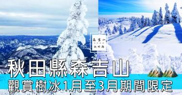 完全係夢幻場景啊~~日本秋田縣森吉山,去到邊都見到期間限定嘅一顆顆樹冰!