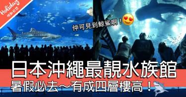 暑假必去!世界上最靚超正水族館~就係沖繩啊!