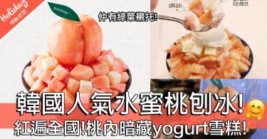 紅遍全國!韓國人氣水蜜桃刨冰!桃內暗藏yogurt雪糕!