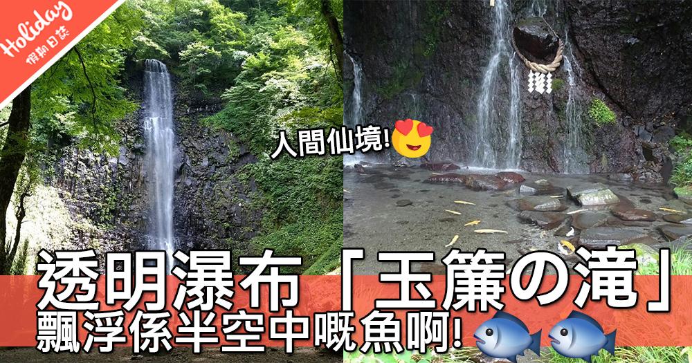 人間仙境啊!日本箱根超透明瀑布「玉簾の滝」~啲魚好似飄浮係半空中咁!