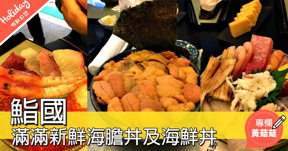 【滿滿新鮮海膽丼及海鮮丼@鮨國】