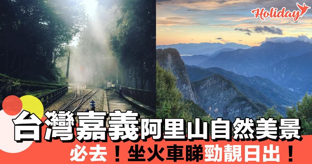 台灣嘉義阿里山自然美景!坐火車睇日出一流~必去!