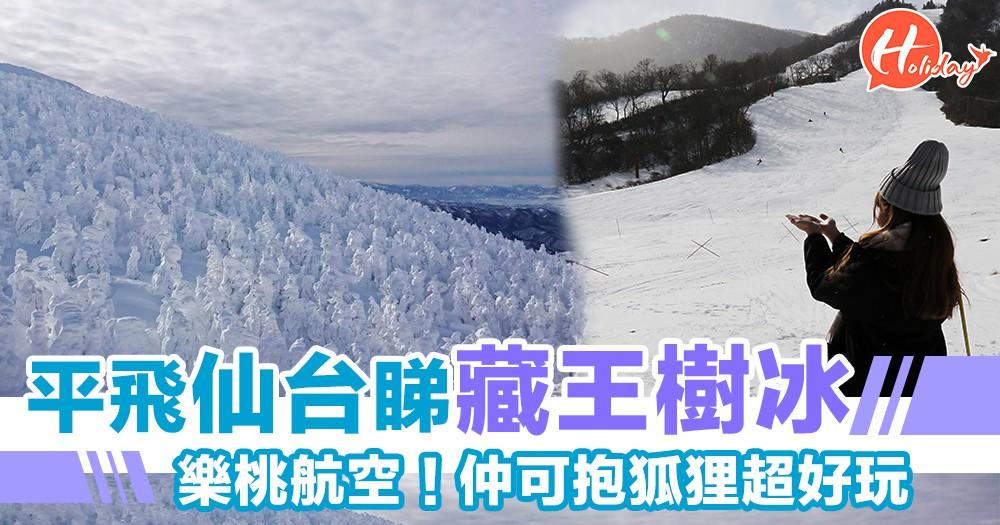樂桃平價轉飛仙台~特定季節都只係$270元起~睇藏王樹冰抱狐狸超好玩!