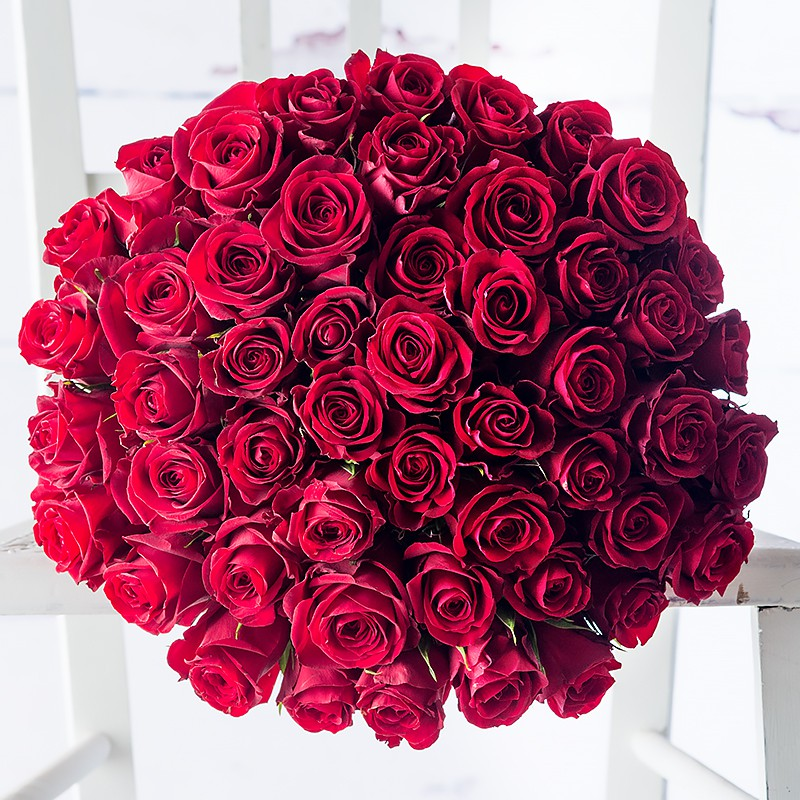 50_red_roses_8
