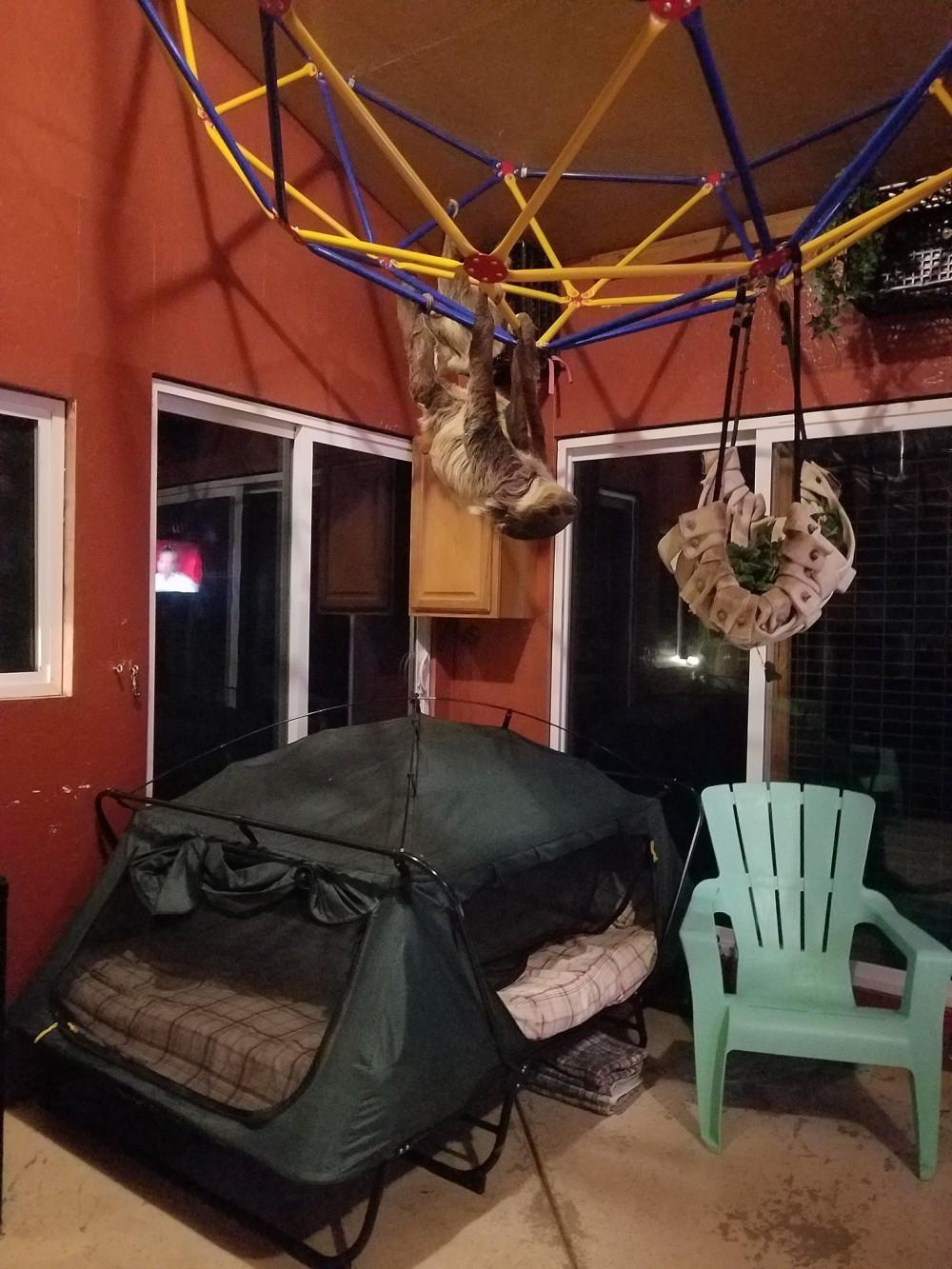 ZWCC Sloth Center