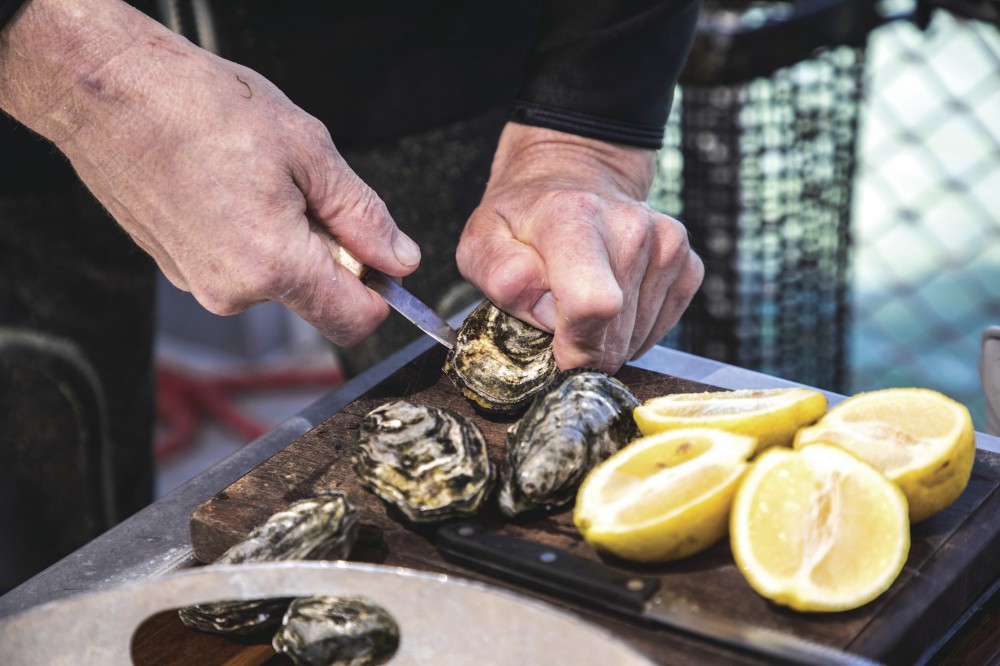 Pure Coffin Bay Oysters_2