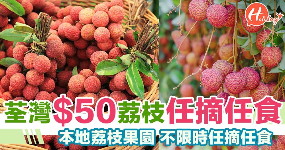 夏日必備節目!狂食當造水果!荔枝果園任摘任食~每位只需$50!不限時任你食!