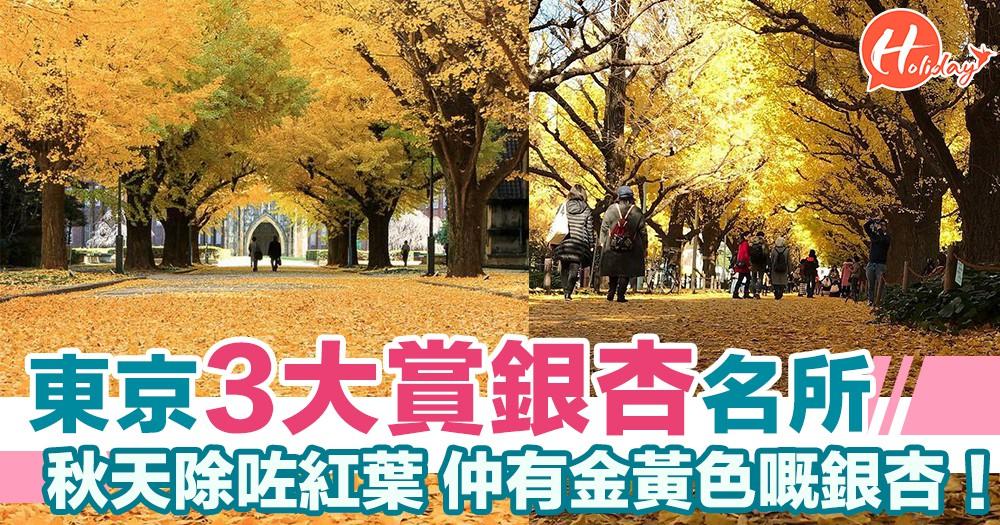 東京賞銀杏3大名所 秋天除咗紅葉外 都唔好錯過金黃色嘅銀杏~