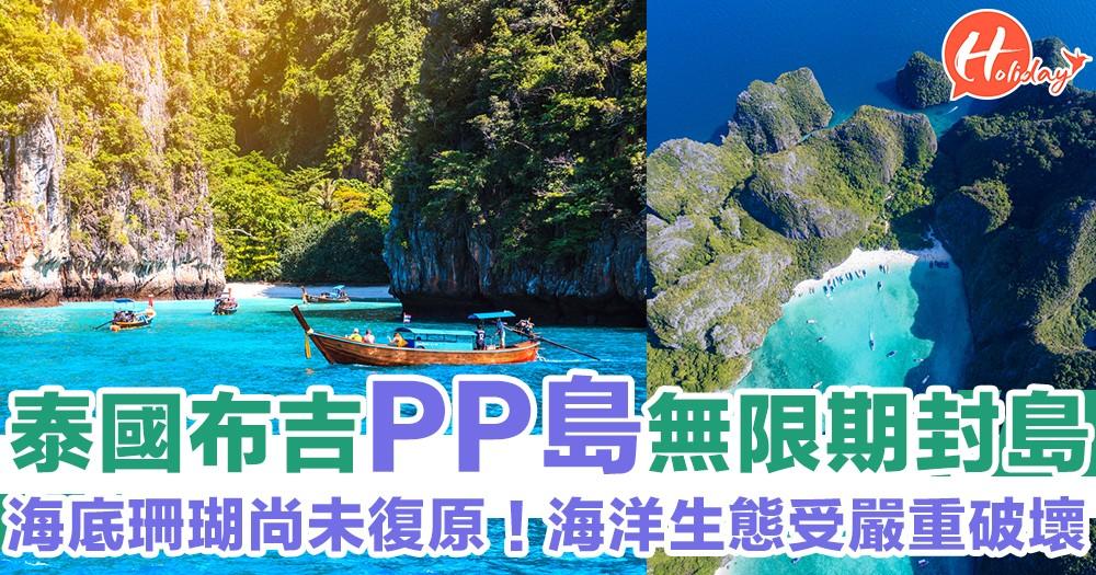 泰國政府PP島宣佈無限期關閉!封島4個月無助環境改善~大量生態破壞!