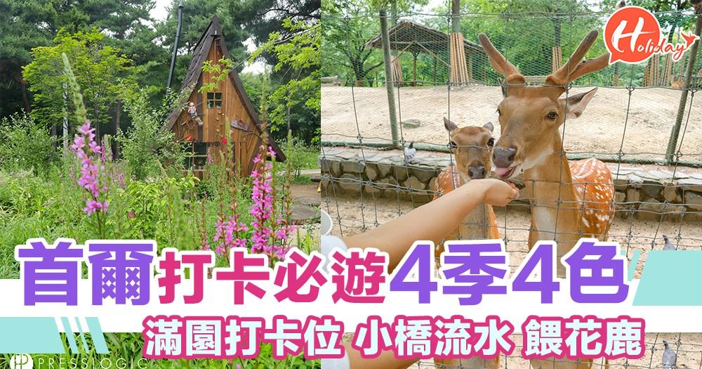 四季必遊打卡公園!首爾市內打卡熱點!秋賞楓葉春櫻賞櫻~萌萌花鹿等你餵!