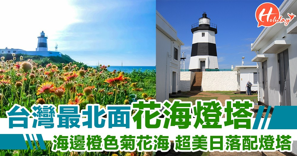 台灣清新打卡點~花海配燈塔再配海邊靚景!希臘風黑白燈塔~橙色菊花花海!