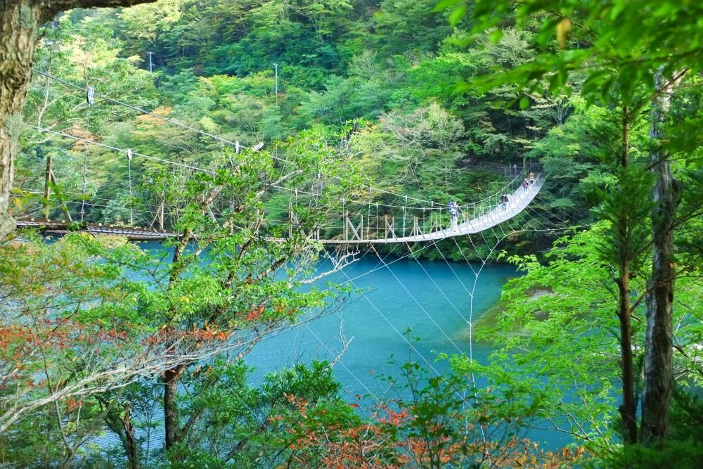 shizuoka mytabi官網